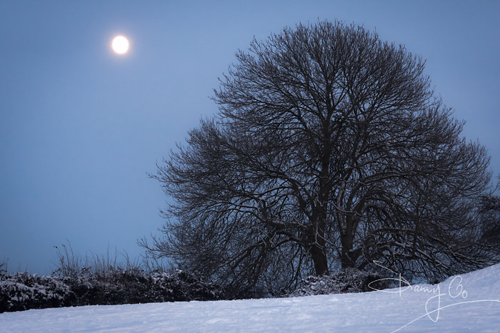 Moonrise over Castle Cary