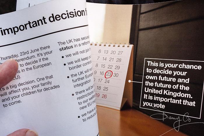 EU Referendum Leaflet